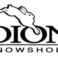 Dion Snow Shoes