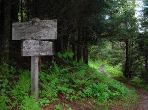 Confluence_of_Bullhead_and_Rainbow_Falls_Trails